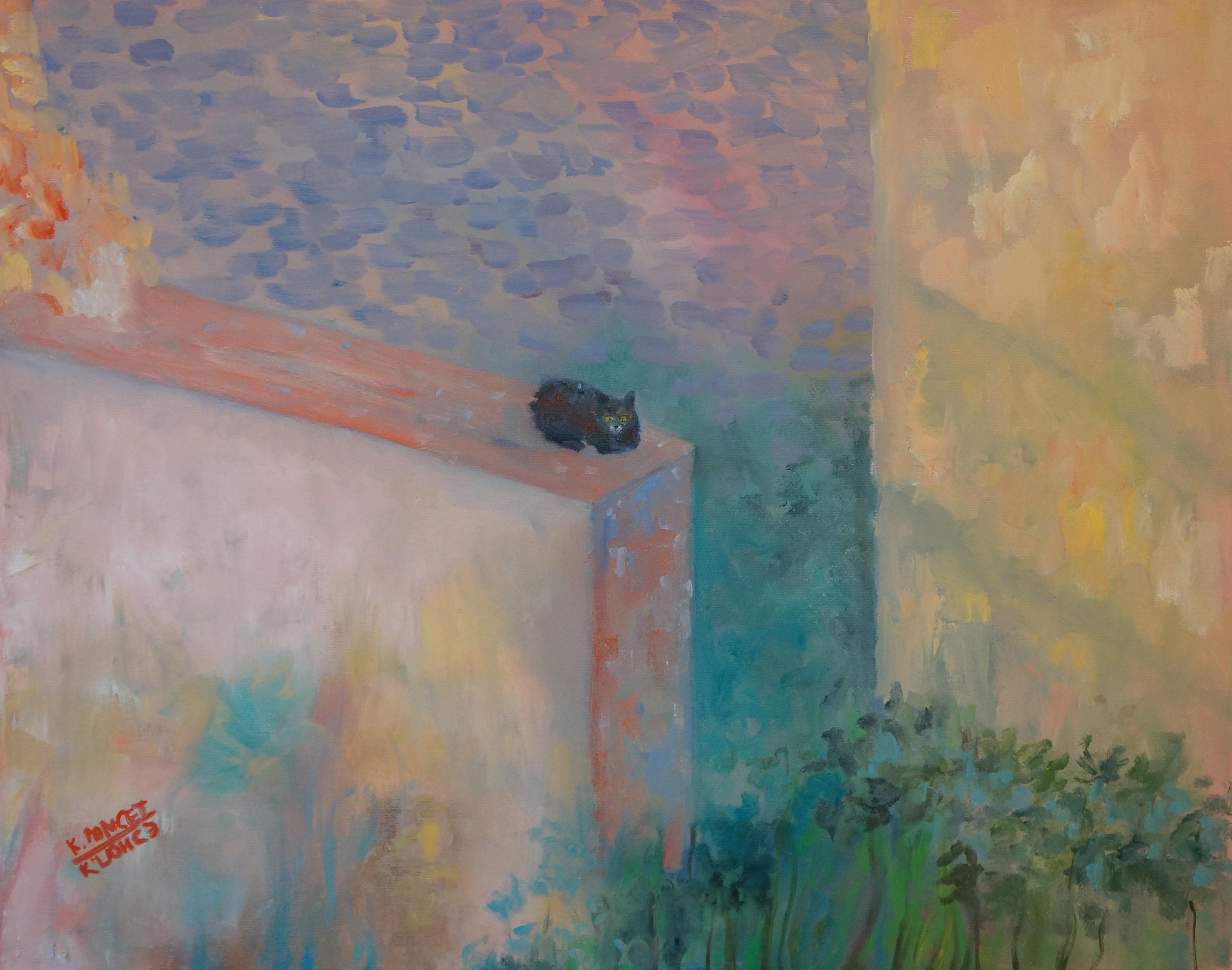 Cat in a wall in Dubrovnik